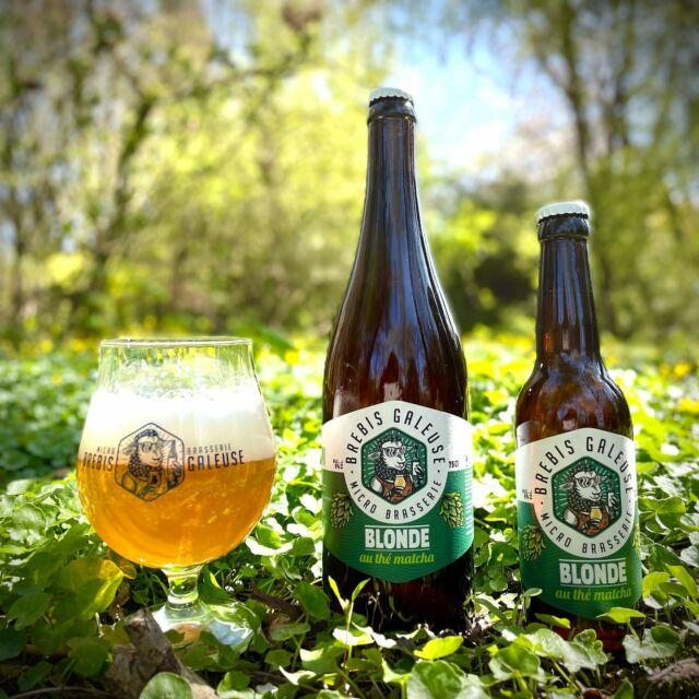 Pssst ... on me souffle dans l'oreille qu'une bière expérimentale a été brassée secrètement et en très petite quantité.   Il s'agit d'une blonde subtilement aromatisée au thé matcha 🍃🤩😋 !!!!   Elle est disponible en quantité très limitée (moins de 200 bouteilles) exclusivement sur www.brebisgaleuse.fr 🤗😁  Alors à très vite pour le retrait de vos commandes à la brasserie ... 😘  #brebisgaleuse #craftbeer #biere #bieredunord #brasserieartisanale #biereartisanale #bierebrebisgaleuse #beer #brasserie #brasseriebrebisgaleuse #microbrasserie #bièreauthé #artisan #madeinhautdefrance #roellecourt #saintpolsurternoise #tea #region_hautsdefrance #brasseurshautsdefrance #nordtourisme #7valleesternoistourisme #objectifopale #stpolsurternoise  #birthday #beerlove #bieredunord #bierelille #jesoutiensmoncommercedeproximité #beergeeks #circuitcourt #artisanat